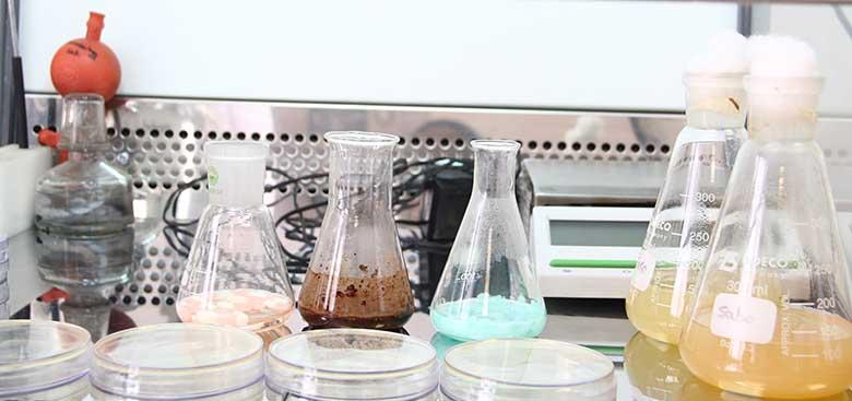 تحقیق و توسعه دارو
